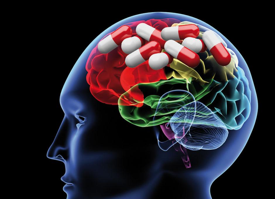 cerebro y drogas libro pdf