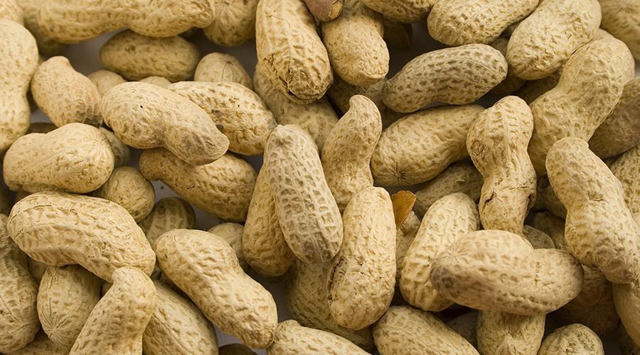 Alergia al cacahuate