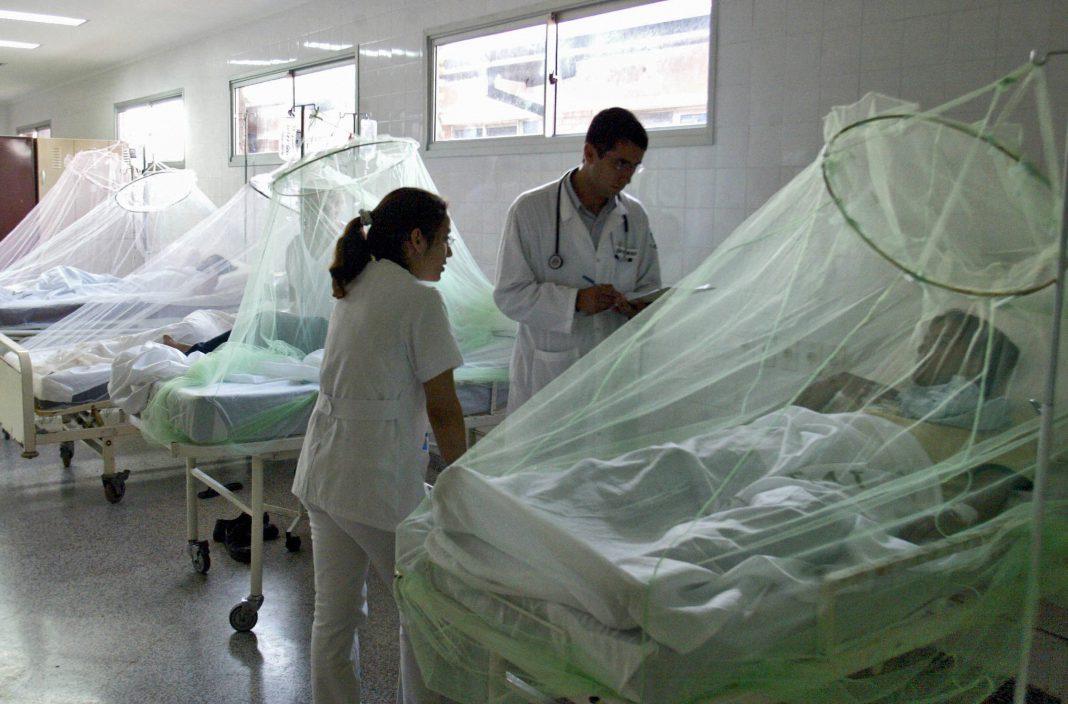 Alerta de la OMS por aumento casos de malaria en Venezuela