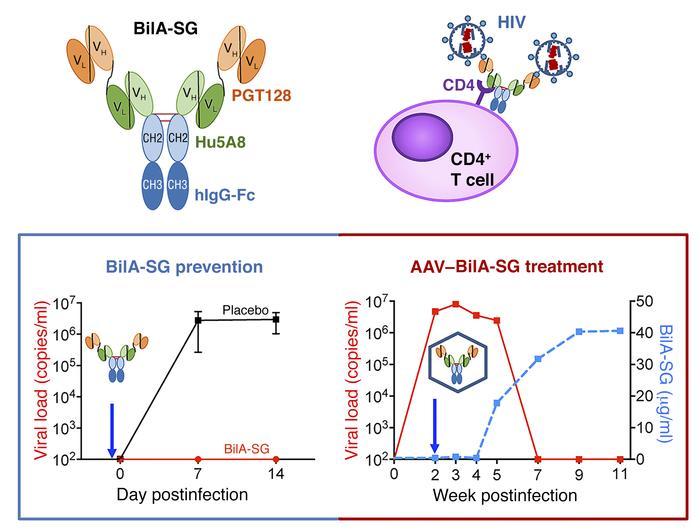 Respuestas al tratamiento con BiLA-SG