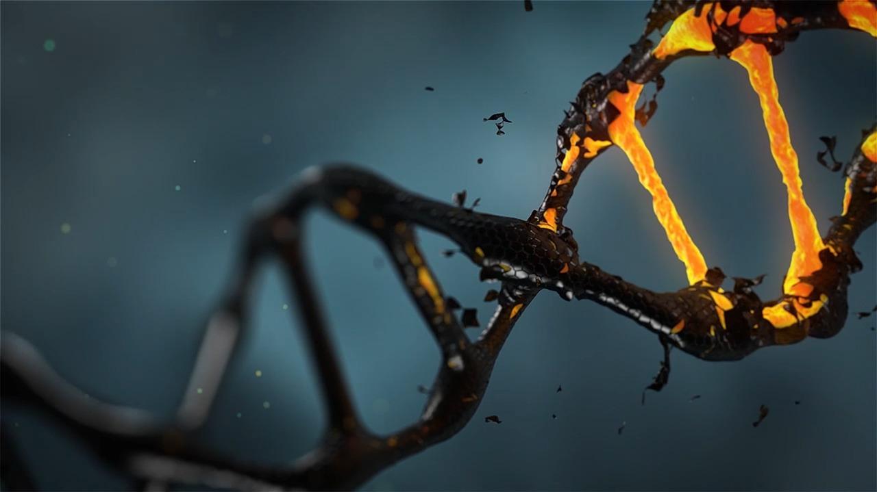 La técnica CRISPR/Cas9 causa mutaciones genéticas no deseadas