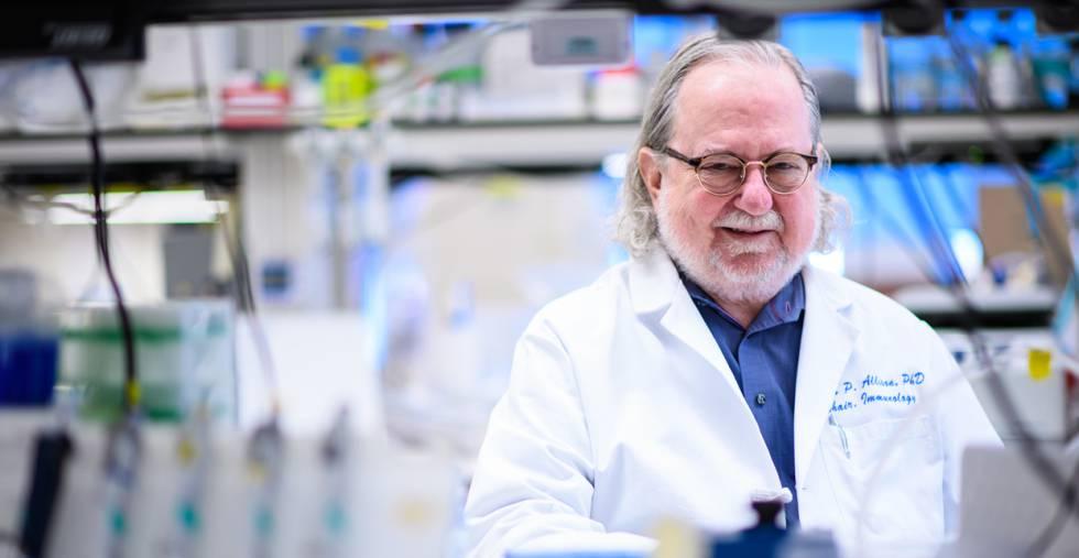 Premio Nobel de Medicina 2018 para investigadores de inmunoterapia contra el cáncer