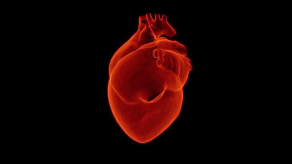 Hallan molécula que podría tratar insuficiencias cardiacas