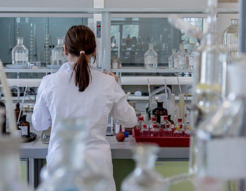 Modifican células madre para mejorar la respuesta a la insulina en ratones diabéticos