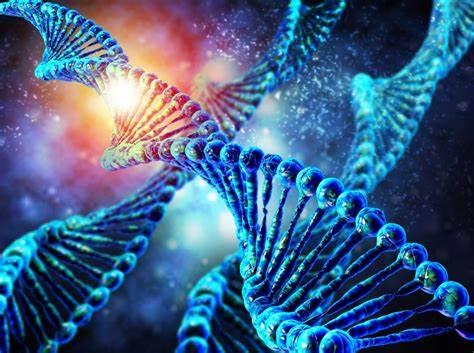 Estudio revela correlación entre gen mutante y autismo
