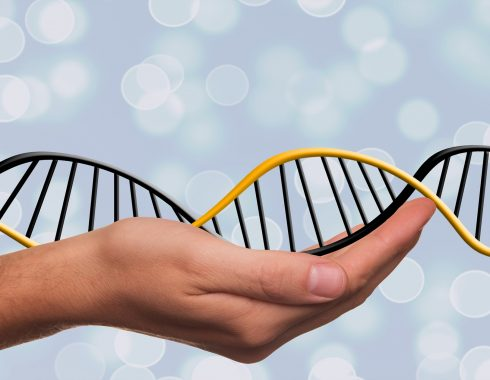 Dieta del ADN: ¿cómo saber si tus genes te ayudarían a combatir la obesidad?
