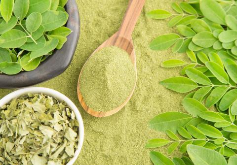 """La moringa oleifera es una planta conocida también como """"baqueta"""" o """"el árbol milagroso"""". Ha sido utiliza por sus propiedades medicinales y sus beneficios a la salud gracias a sus efectos antivirales, antidepresivos, antiinflamatorios y antimicóticos."""