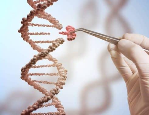 ADN edición genetica