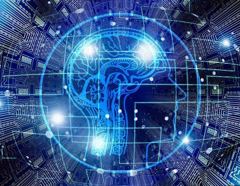 Relacionan comportamiento antisocial con estructura cerebral