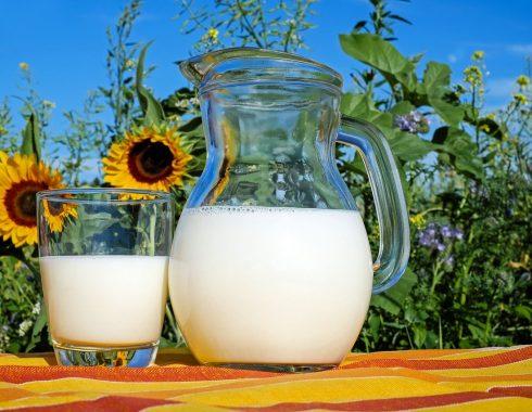 ¿La leche es tan necesaria y saludable como creemos?