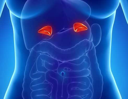 Cómo tratar a pacientes con disfunción endocrina que padecen COVID-19