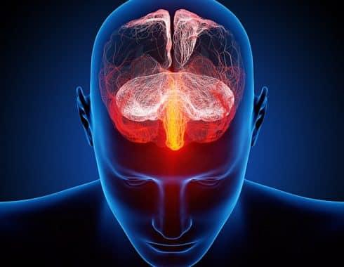 Sustancia blanca del cerebro y esquizofrenia
