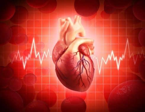 Los latidos cardíacos cambian nuestra percepción sensorial