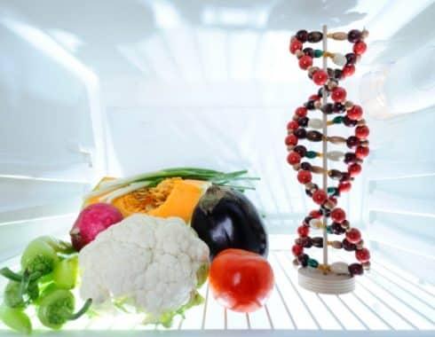 El metabolismo y la genética están relacionados