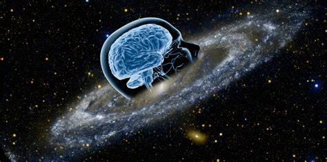 ¿Cómo se relacionan la neurociencia y la psicología?