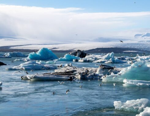 acciones contra el cambio climático
