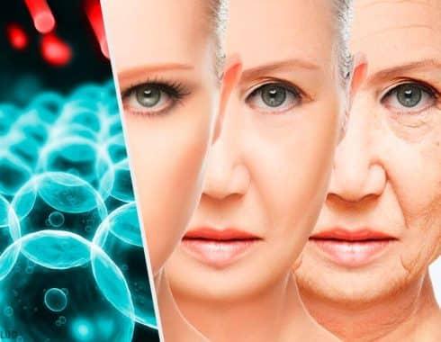 7 hábitos saludables para retrasar el envejecimiento