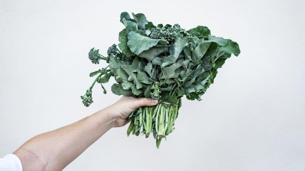 Cuáles son las propiedades y beneficios del brócoli