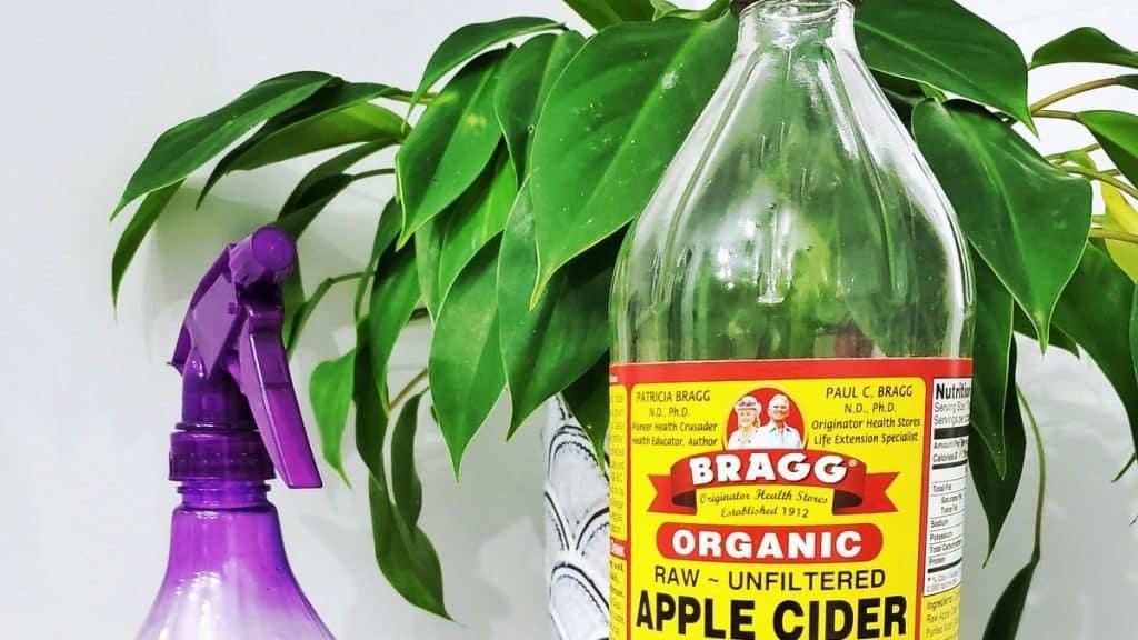 Cuáles son los beneficios del vinagre de manzana