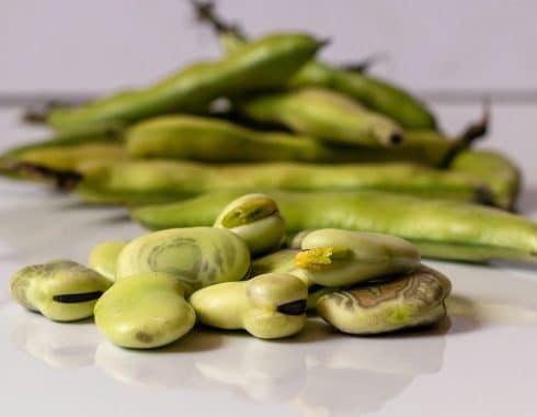 Beneficios para la salud de las legumbres