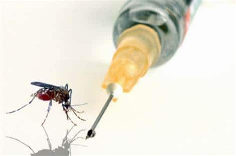 La prometedora vacuna contra la malaria